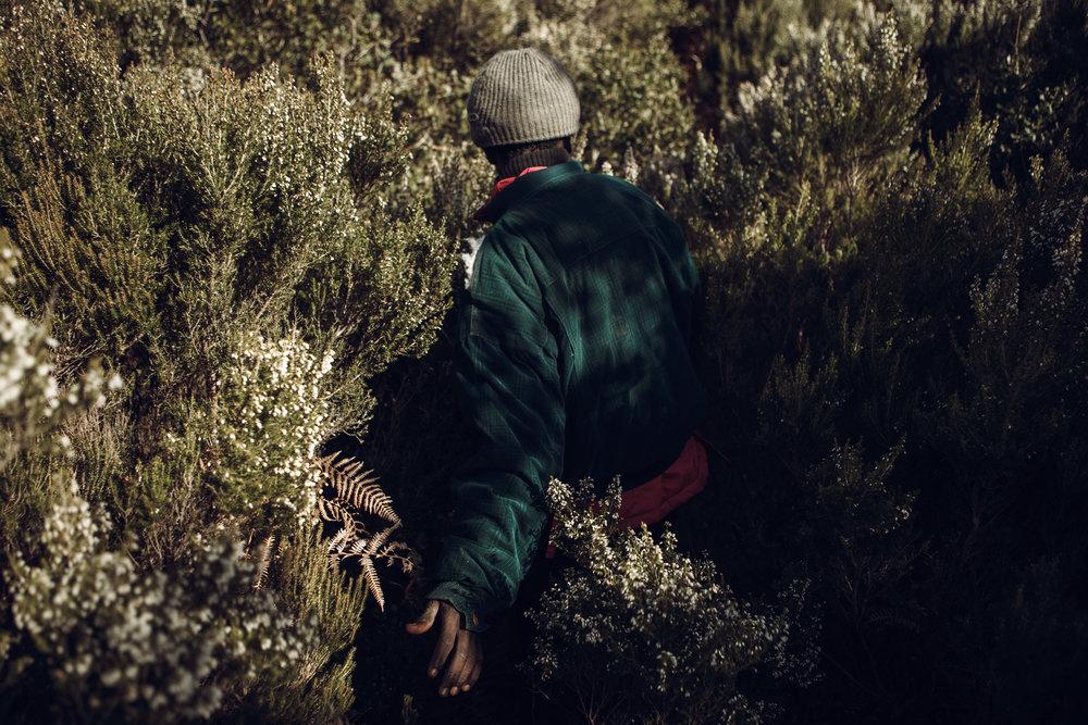 2014_VN_Marokko_004-77.jpg