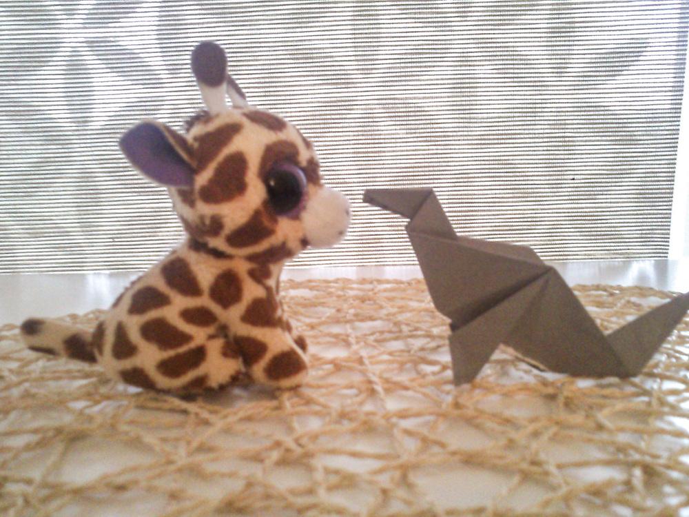 Aneta-Girafe.jpg