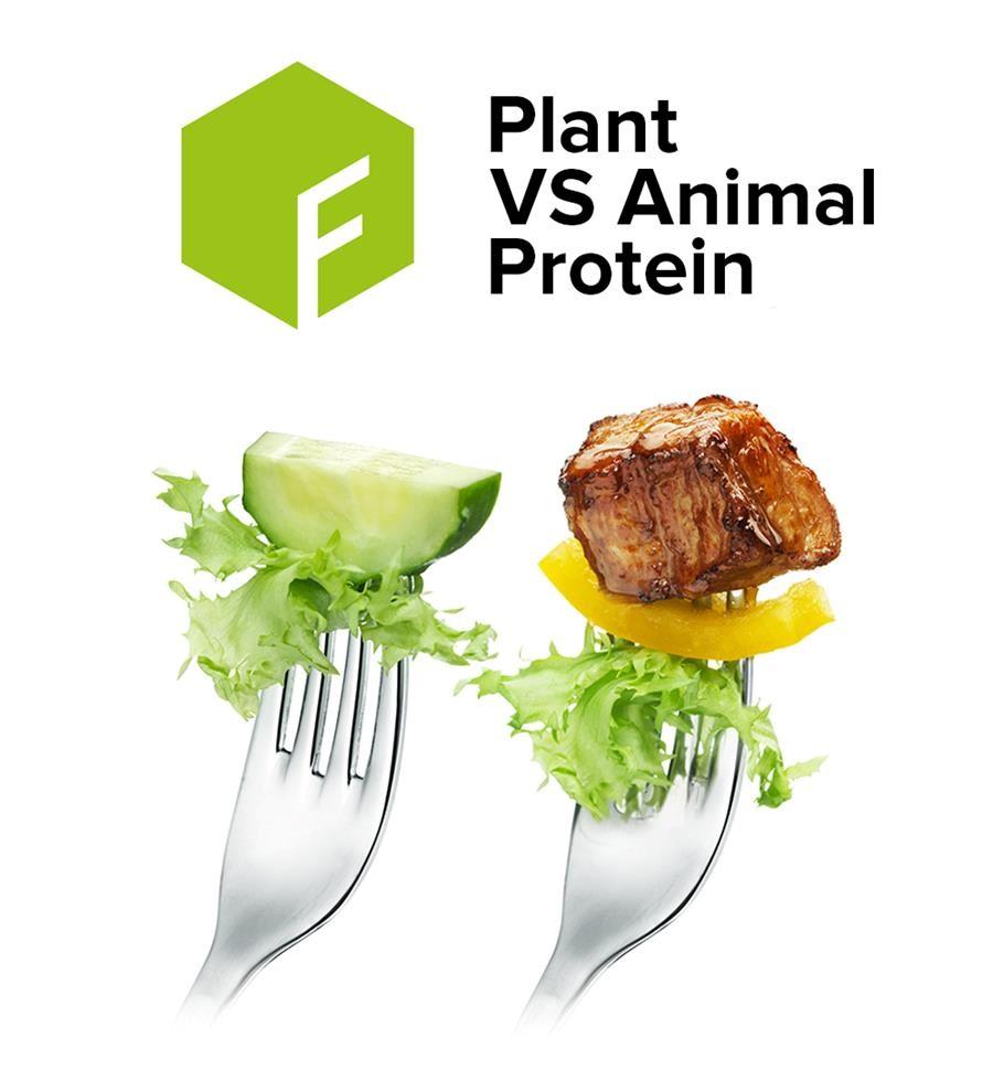 TFS Plant Protein.jpg