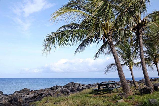 Perfect camping spot . . . #bigisland#bigislandlove#ハワイ島生活#ハワイ島