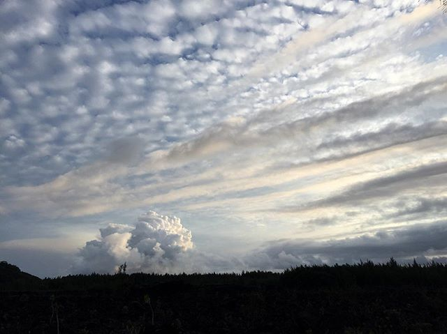 The view of the plume from near our neighborhood.  家の近くから見る噴火中の煙と雲 . . . #kilaueaeruption#volcano#puna#bigisland#bigislandhawaii#ハワイ島#噴火中#プナ
