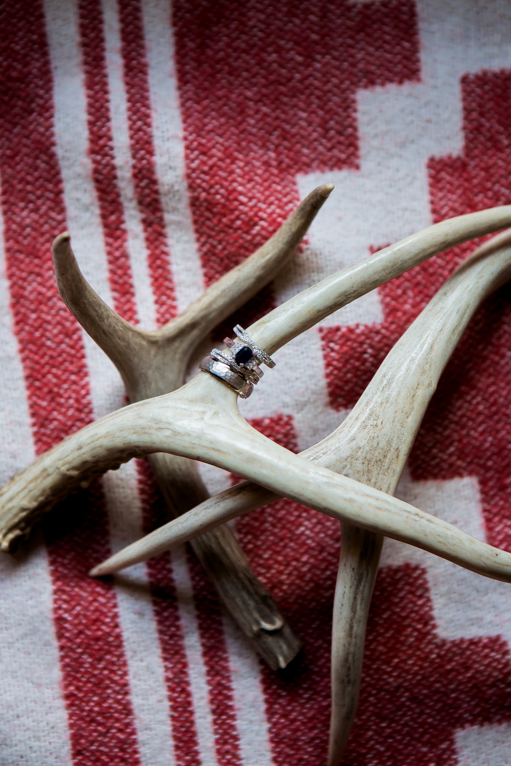 Wedding rings and deer antlers - Pagosa Springs Wedding In National Forest Colorado Alexi Hubbell Photography