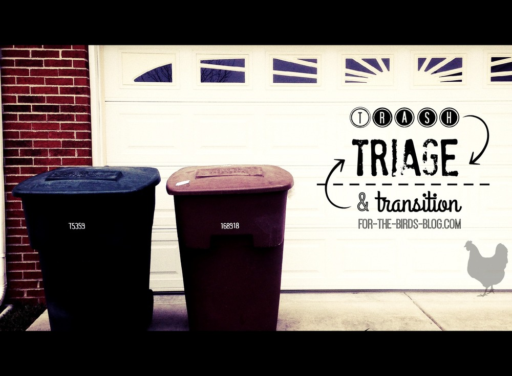 trash triage and transition