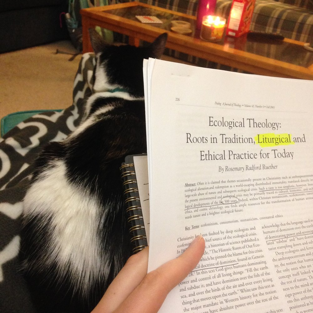 Luna-study-buddy