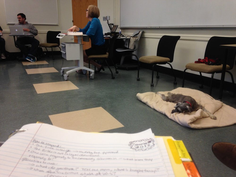guest-lecturer