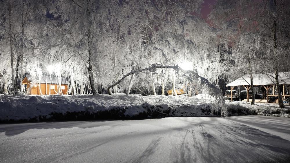 staw zima.jpg
