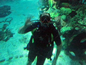 DiveQuest at Disney World Epcot Center