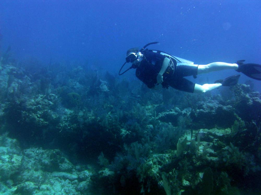2012-04-13 Scuba diving with Captain Slate Key Largo