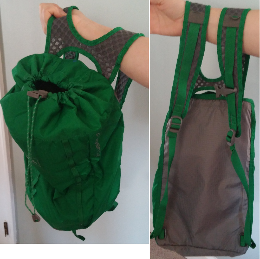 A great day pack from REI. The top is not fully closed and the leather flap that covers the opening is not in this view.