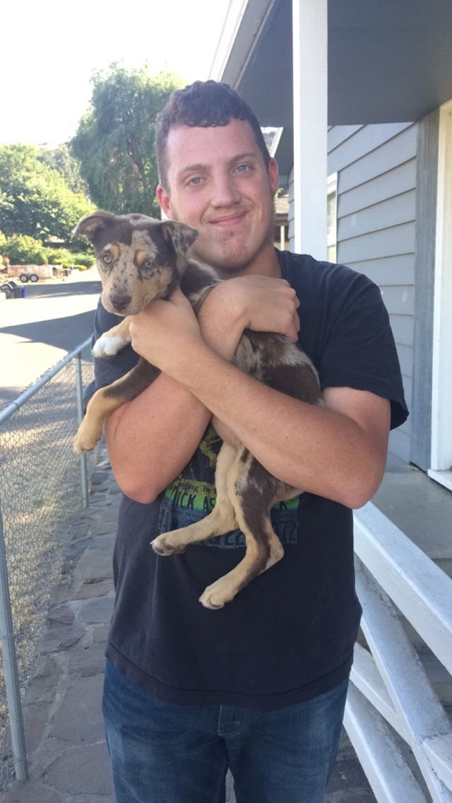 Your puppy needs to meet lots of new people! Here is Tesla and my brother Dylan.