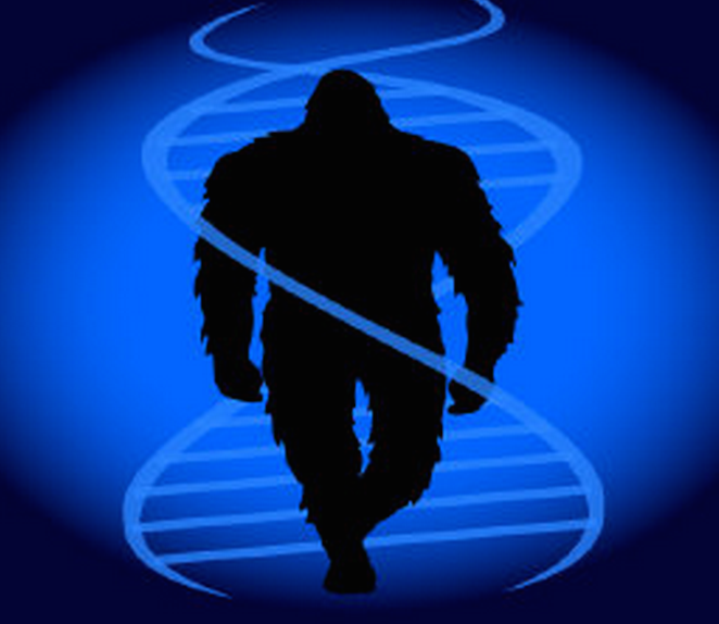 THE SASQUATCH GENOME PROJECT
