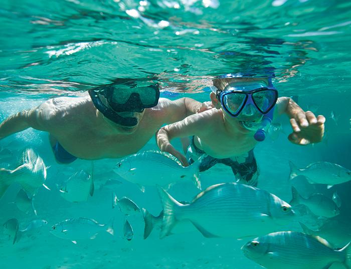 SUSCZ_Dad_Son_Snorkeling2_1.jpg