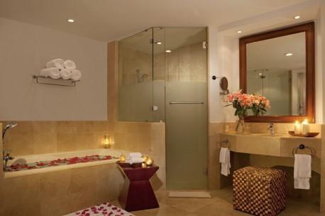 NOLPC_PresidentialSuite_Bathroom_1-458x305.jpg