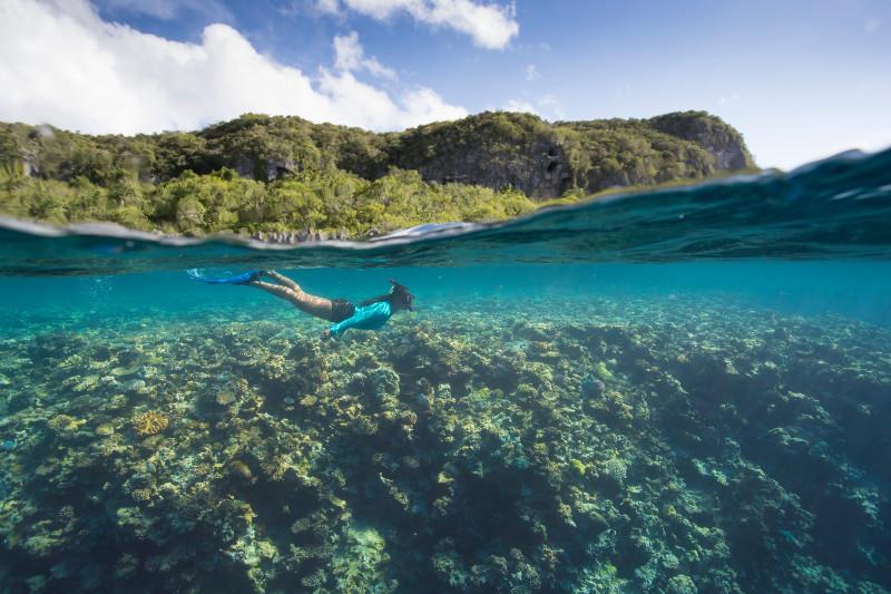 SBN_ASP_RSAY18_Ventures_Underwater reef landscape and Ventures Staff_Tadine_New Caledonia_5.jpg