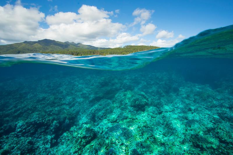 SBN_ASP_RSAY18_Ventures_Underwater reef landscape_near Mystery Island_Vanuatu_1.jpg