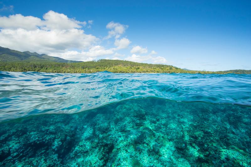 SBN_ASP_RSAY18_Ventures_Underwater reef landscape_near Mystery Island_Vanuatu_2.jpg
