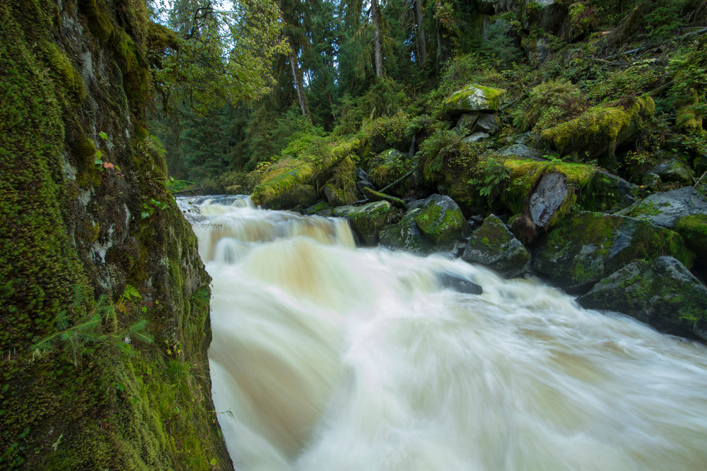 SBN_ABC_RSAY17_Anan Creek_Waterfall_Wrangell_Alaska.jpg