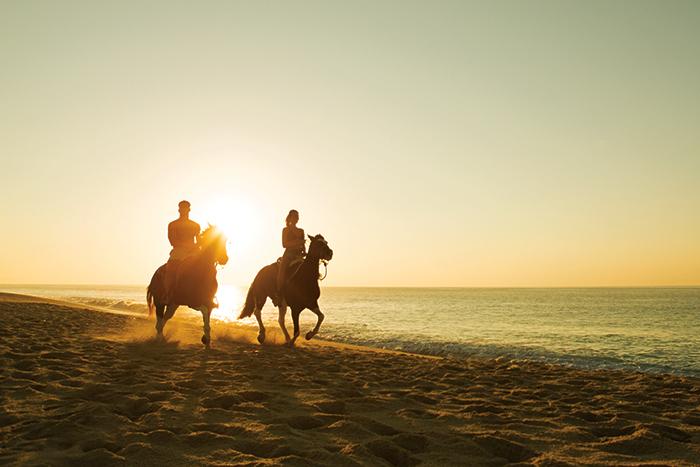 DRELC_EXT_Horsebackriding_Beach1_1.jpg