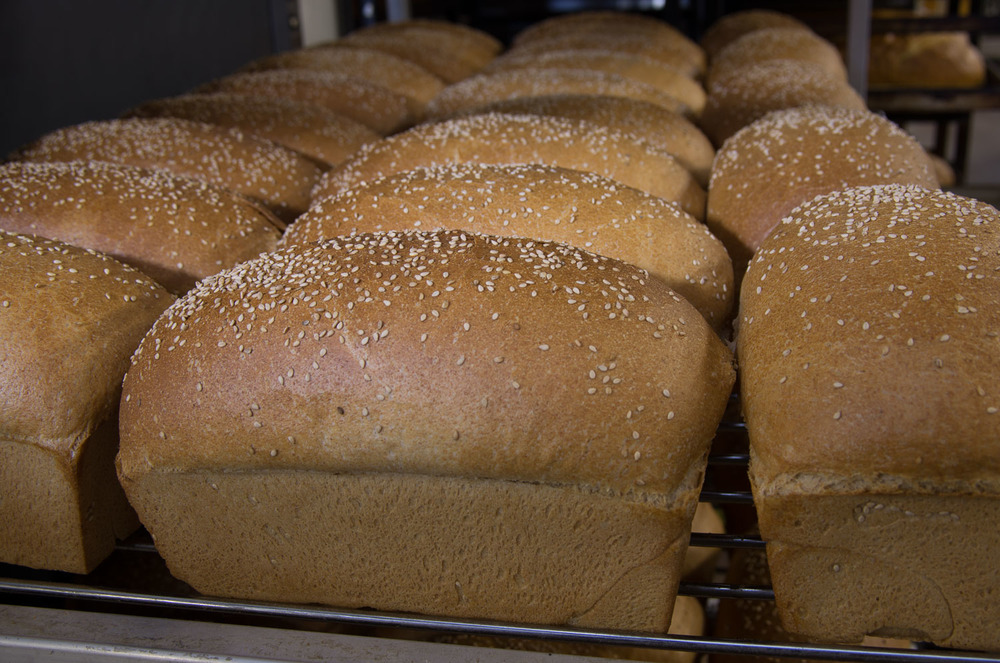 Baked in Telluride-21.jpg
