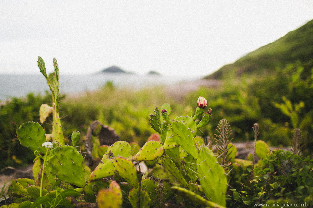 Raoní Aguiar Fotografia [Lu+Ra] 014.jpg