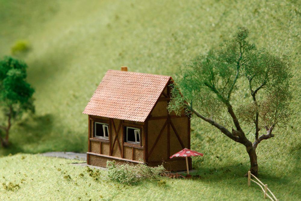 The Extraordinary Small Lodge