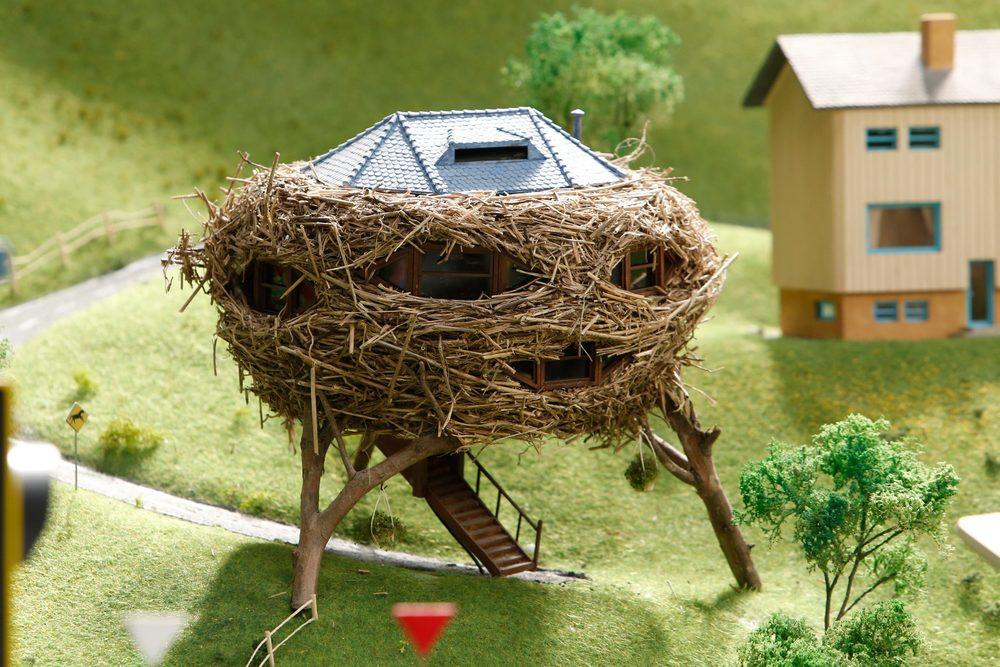 Bird's Nest House