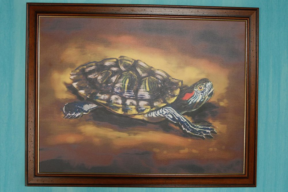 The tortoise. Oil on canvas, by Frank