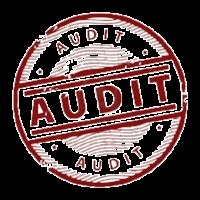Brand Audit   This clarifies the current state of the brand based on secondary data available. We identify this based on a number of metrics and estimate potential opportunities and risks. Ideal for Private Equity looking to buy a consumer goods business
