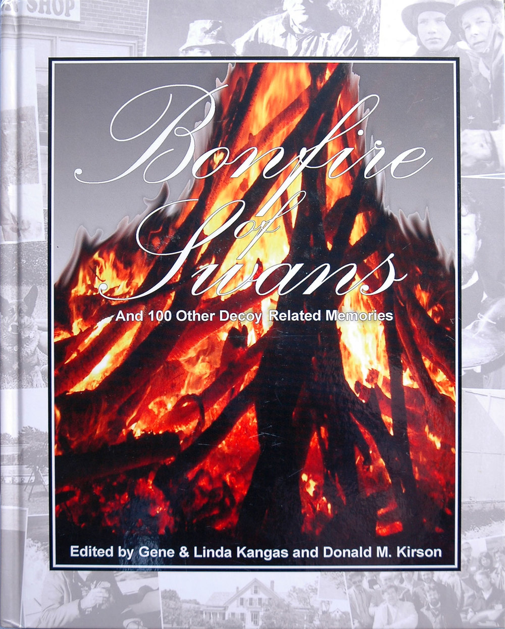 a21-bonfire-of-swans-book.jpg