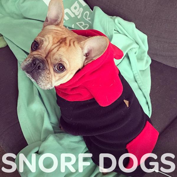 chip-snorfdogs.jpg