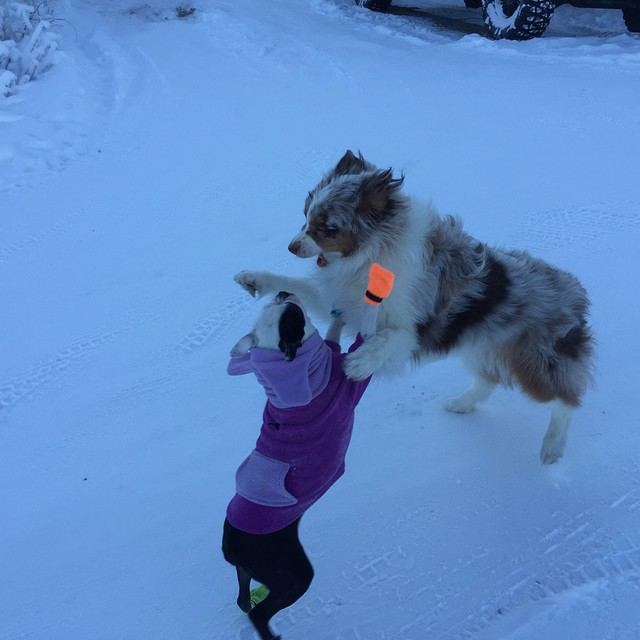 Grainne in her Cold-Weather BatHat Hoodie. Alaska, USA.