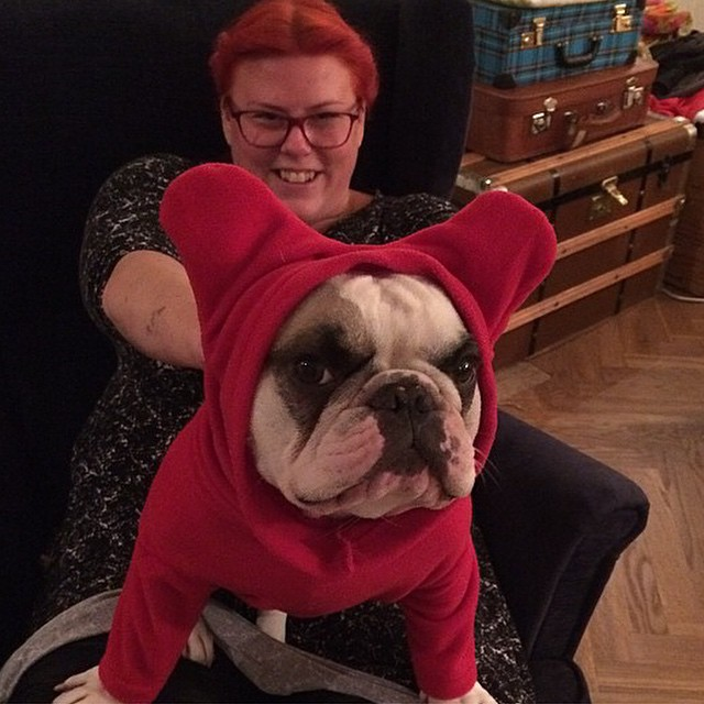 February_27__2015_at_1215PM_-_Stay_in_warm_in_my__BatHat_from__Snorfindustries__LittleMissLulu__frenchie.jpg