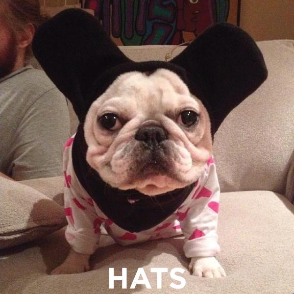 HATS-BUTTON.jpg
