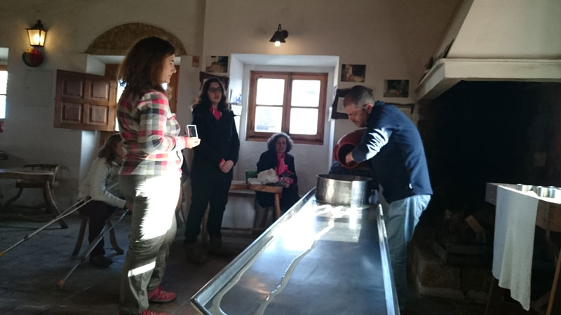 - visit to a family-owned traditional cheese factory