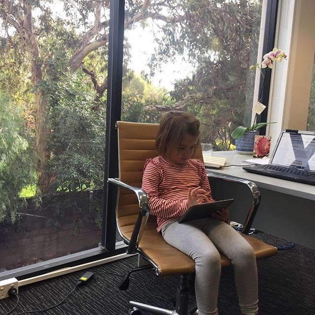 Our office helper for today. .  #adelaidefinance #familybusiness #adelaidemortgage #markloveday #lovedayfinancial #lovemoney