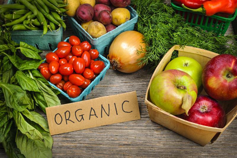 Intake of Organic Food