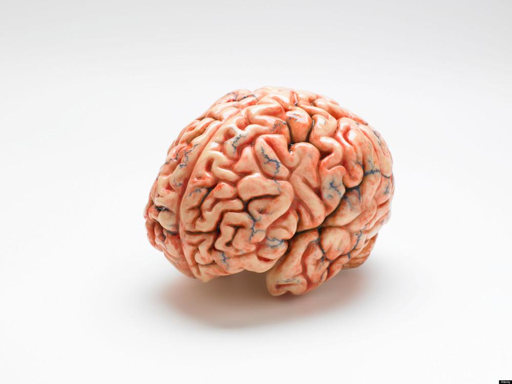 brainhealthtips.jpg