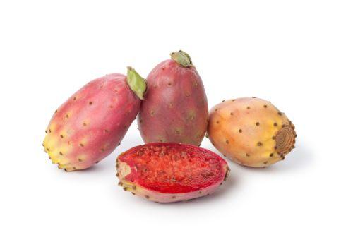 exoticfruits.jpg