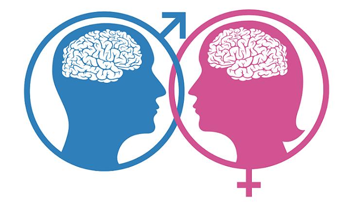 gender variation content pieces 2010