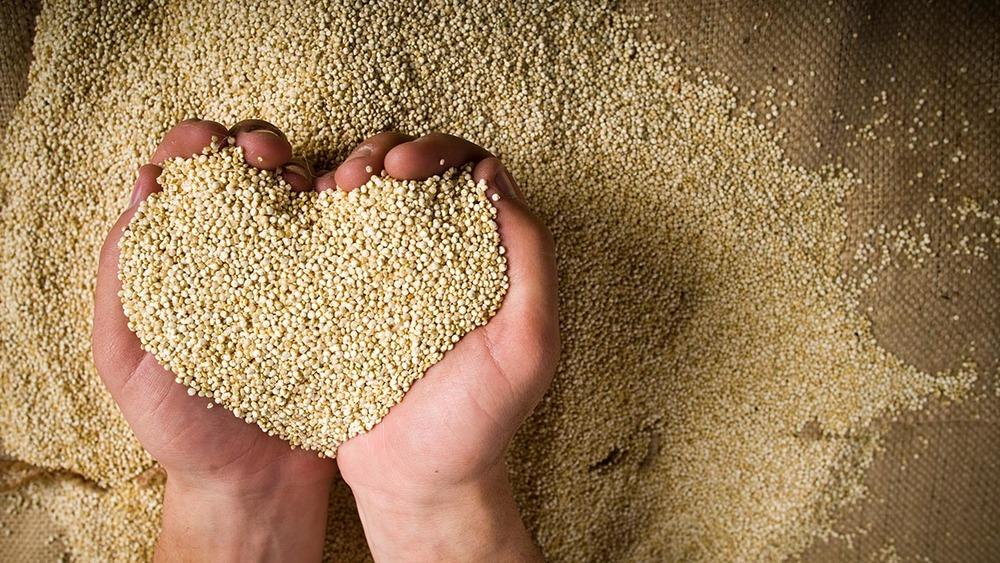Quinoa - The Super Food Grain - Dr. David Samadi.jpg