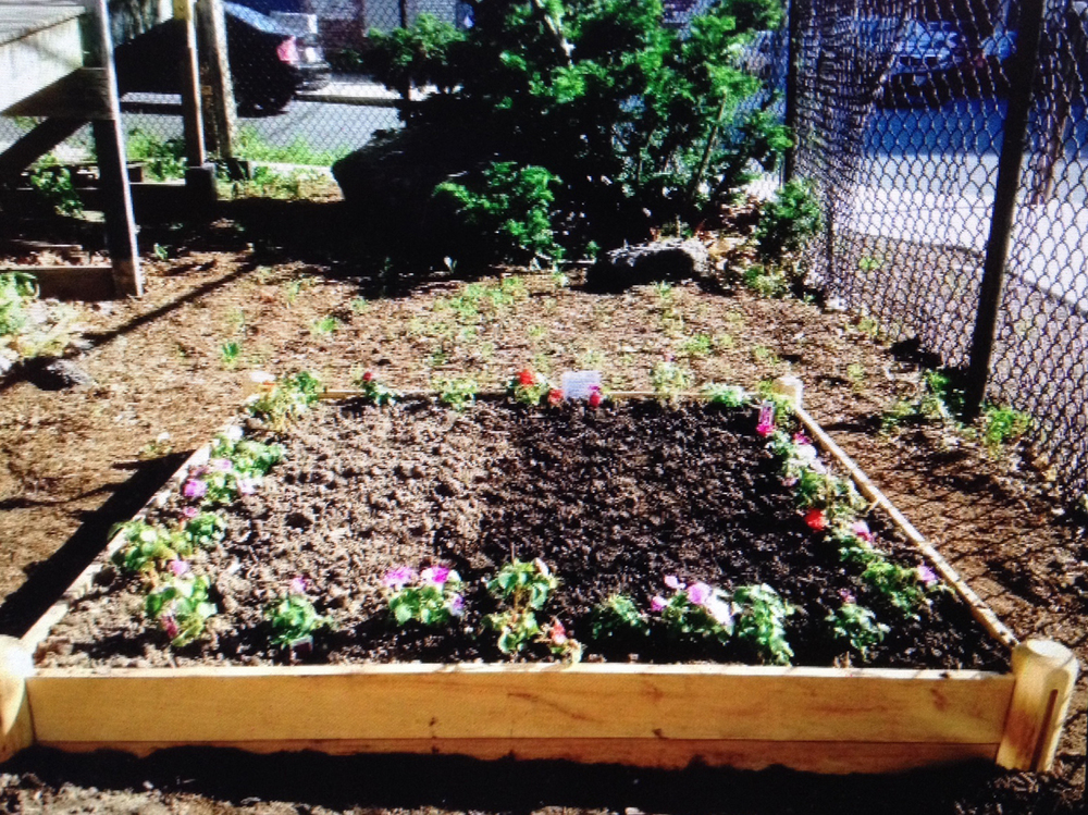 Garden Bed Kit - DIY