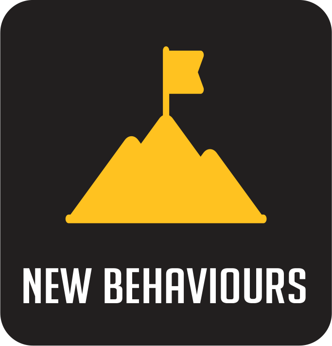 ***Image of New Behaviours will be inserted here from Kym.***