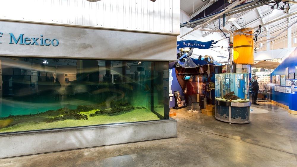16 04 08 DISL Estuarium Photos - Ted Miles Photography (30 of 51) Int 5.jpg