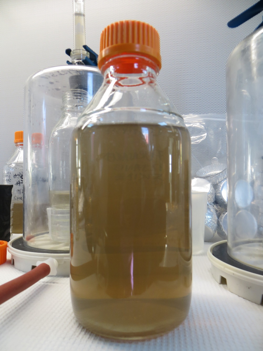 Water from Subglacial Lake Whillans, ready to be filtered.