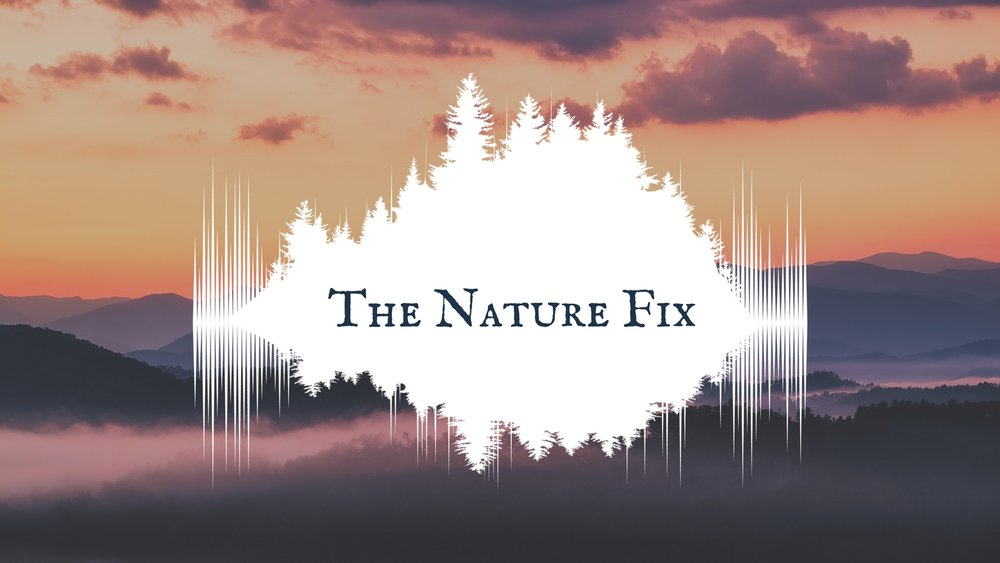 The Nature Fix Logo 1 HORZ.jpg