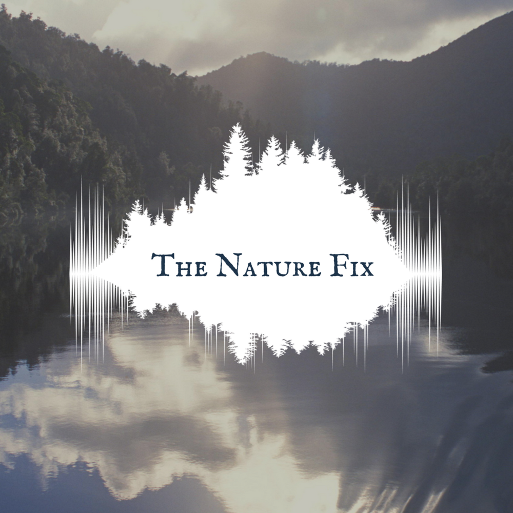 Nature Fix 1 RELEASE.png