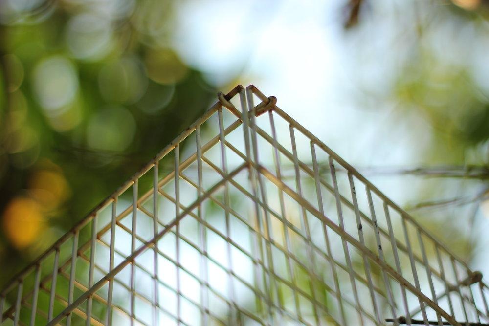 Grandma's Cage  - La Puente, CA (2014)