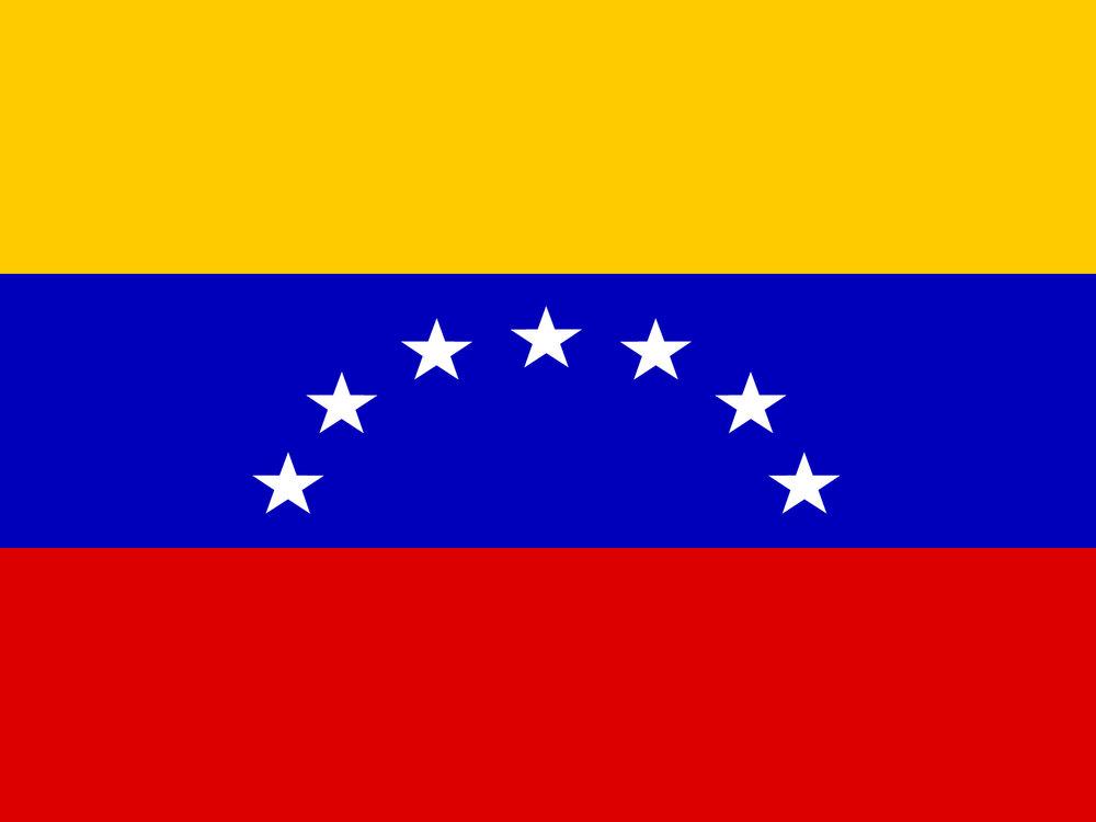 Venezolanxs (2015 - Present)