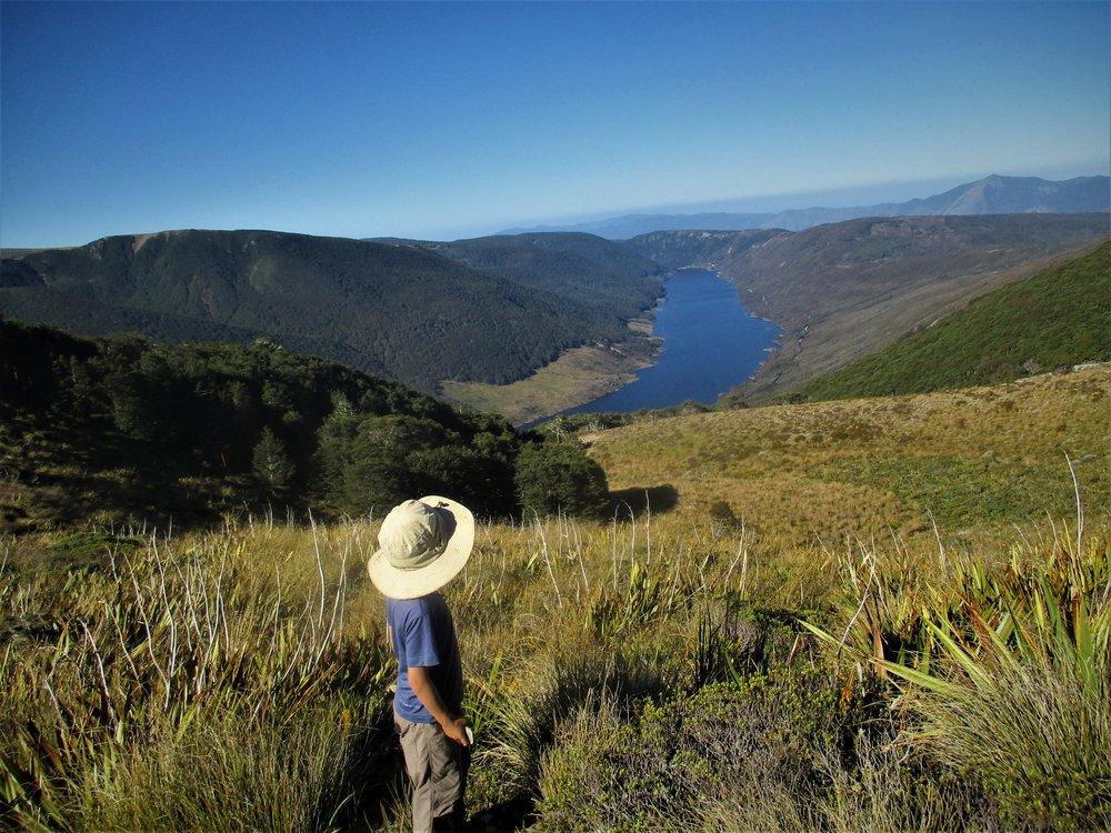 Leo gazes over the Cobb Reservoir, Kahurangi National park