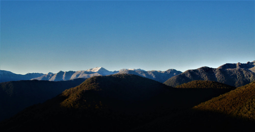 The Kahurangi national park from Mt Perry, a quick stroll above Perry Saddle whilst riding the Heaphy track.